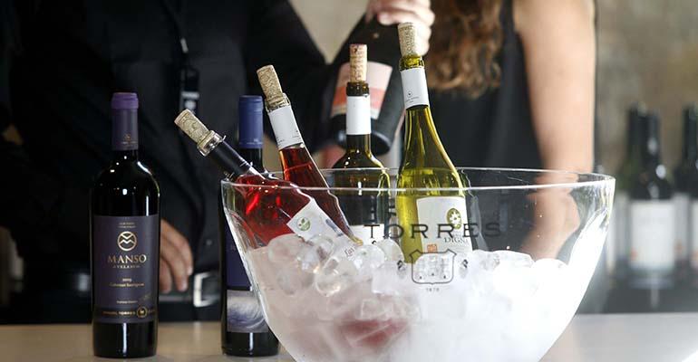 Cata de vinos de Bodegas Torres