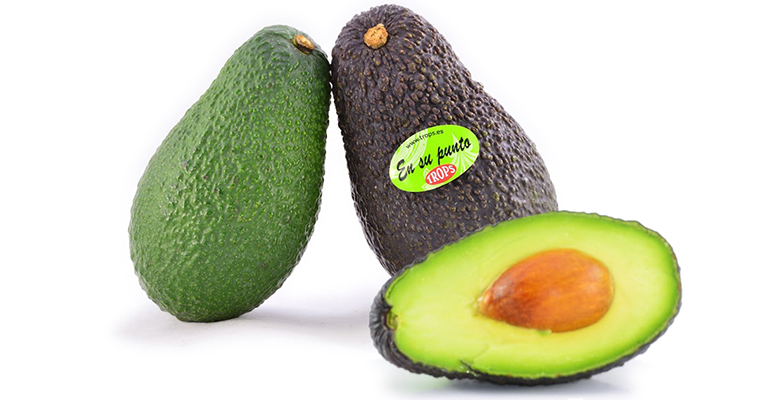 Aguacates trops