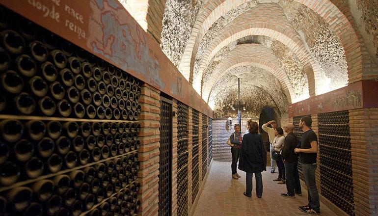 Visitas bodegas ruta del vino rueda