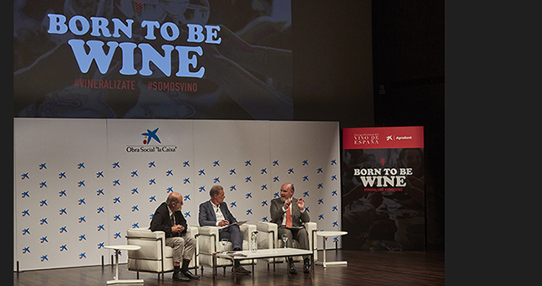 borno-to-be-wine-oive-jornada