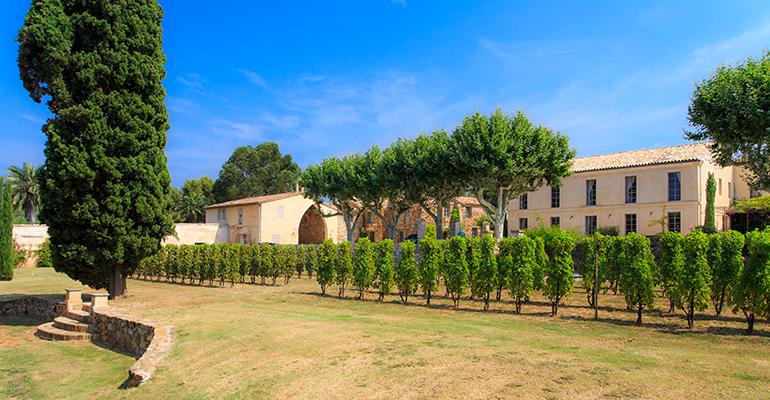 viñas provenza