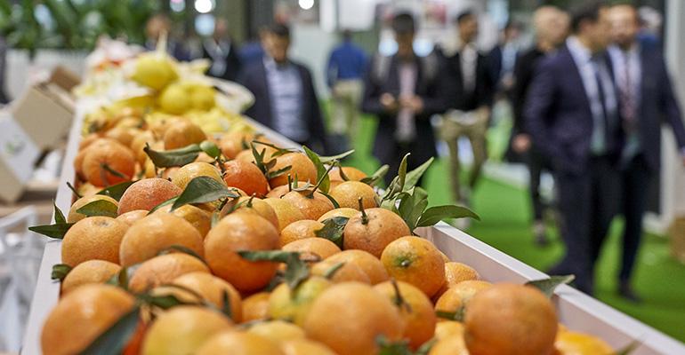 Fruit Attraction 2020 (online)