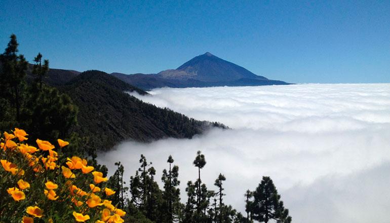 Mar de nubes Islas Canarias