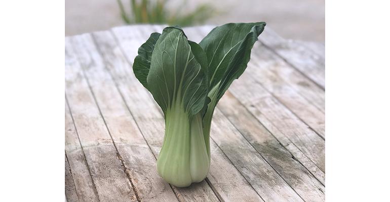 primaflor verduras asiáticas